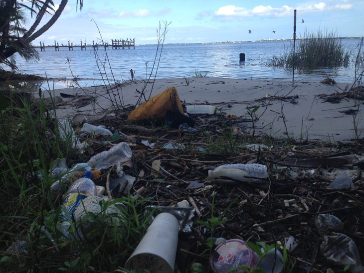 Litter mars the shoreline of the Indian River Lagoon. Photo by Keep Brevard Beautiful Inc.