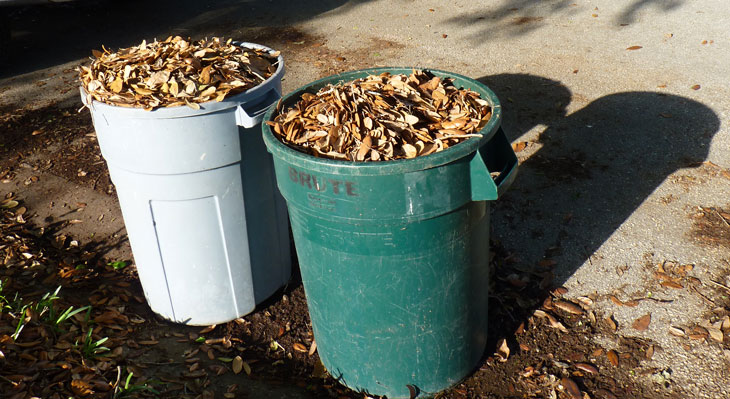 Two cans filled with leaves for curbside pick-up. This is the proper way to dispose of leaves and other yard debris.