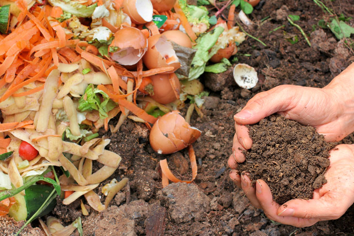 Vegetable scraps and egg shells on one side, good rich soil on the other. Photo from iStock.com