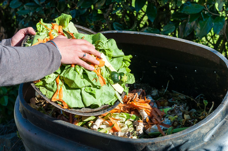 Someone adds vegetable scraps to her composter. Photo from iStock.com